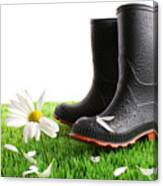 Rubber Boots With Daisy In Grass Canvas Print