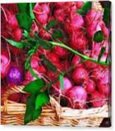 Rubies Organic Canvas Print