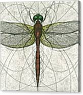 Ruby Meadowhawk Dragonfly Canvas Print