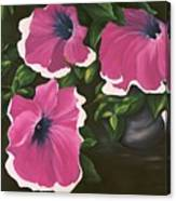 Ruffled Petunias Canvas Print