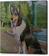 Rufus In Stanley Park Canvas Print