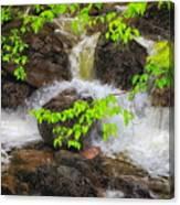 Rugged Landscape Canvas Print