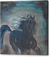 Run Horse Run Canvas Print