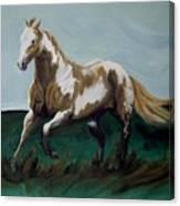 Running Paint Canvas Print