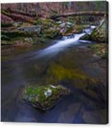 Runoff Canvas Print