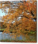 Rural Autumn Country Beauty Canvas Print