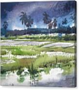 Rural Bengal 5 Canvas Print