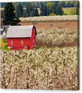 Rural Color Canvas Print