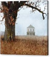 Rural Farmhouse And Large Tree Canvas Print