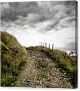 Rural Path Canvas Print