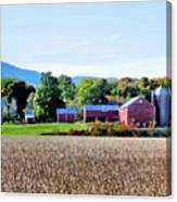 Rural Scene  Canvas Print