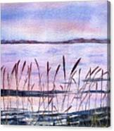 Rushes Canvas Print
