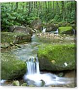 Rushing Mountain Stream Canvas Print