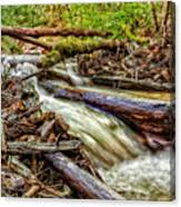 Rushing Stream Canvas Print