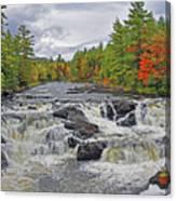 Rushing Towards Fall Canvas Print