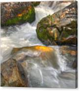 Rushing Water 1 Canvas Print