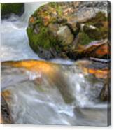 Rushing Water 2 Canvas Print
