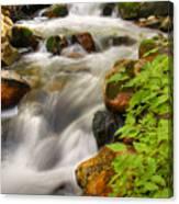 Rushing Water 3 Canvas Print