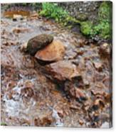 Rushing Waters 2 Canvas Print