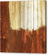 Rust 01 Canvas Print