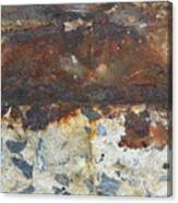 Rust 14 Canvas Print