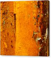 Rust Abstract 2 Canvas Print