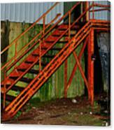 Rust And Mold Canvas Print