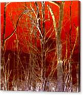 Rust Forest Canvas Print