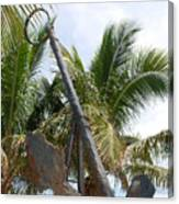 Rusted Anchor Canvas Print