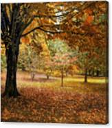 Rustic Autumn  Canvas Print
