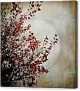 Rustic Moon Canvas Print