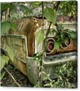Rustic Rear Canvas Print