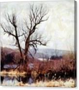 Rustic Reflections Canvas Print