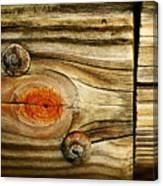Rustic Wood Canvas Print