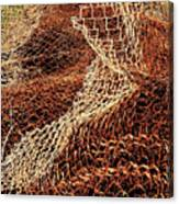 Rusty Chain Link Canvas Print