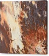 Rusty Drum #1 Canvas Print