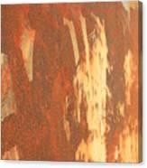 Rusty Drum #2 Canvas Print