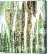 Rusty Metal Background  Canvas Print