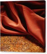 Rusty Silk Canvas Print