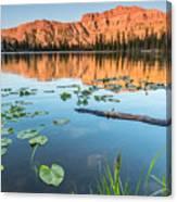 Ruth Lake Lilies Canvas Print