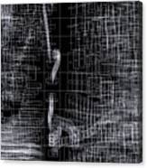 S.2.35 Canvas Print