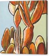 Sabar Cactus Canvas Print