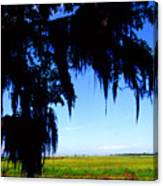 Sabine National Wildlife Refuge Along The Creole Nature Trail Canvas Print