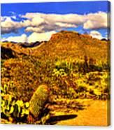 Sabino Canyon Panorama No. 1 Canvas Print