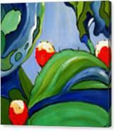 Sabra Canvas Print