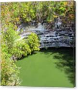 Sacred Cenote Vertical View Canvas Print