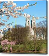 Sacred Heart And Branch Brook Cherry Blossoms  Canvas Print