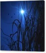 Sacred Moon... Canvas Print