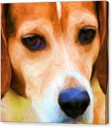Sad Eyes Canvas Print