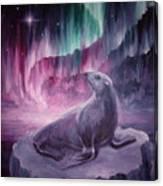 Sad Lonely Seal Canvas Print